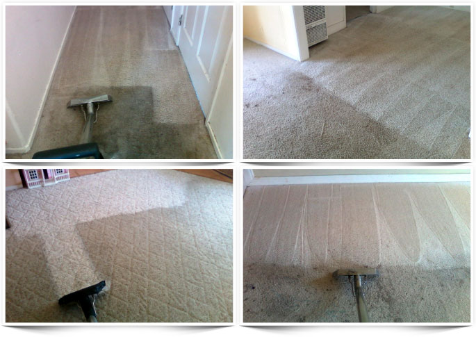 Image: Carpet Cleaning Before & After Photos (Santa Maria, CA)
